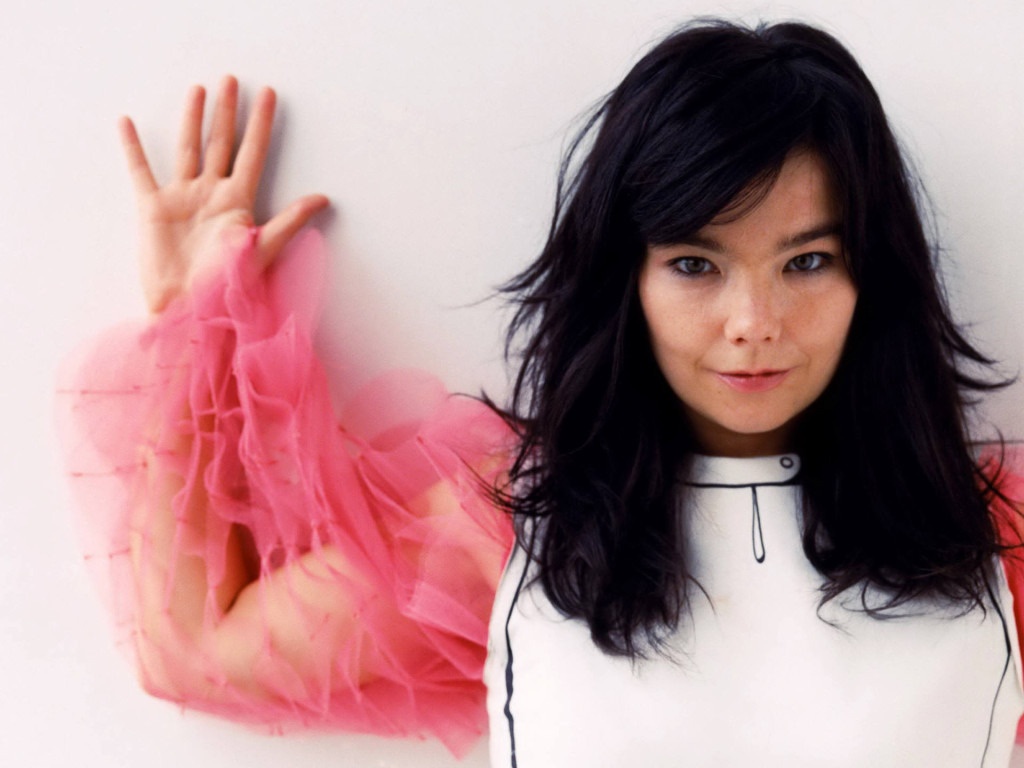 Barney was married to international art and music Goddess, Bjork (seen here in 2007)
