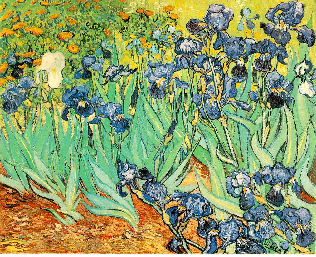 Irises, by Vincent van Gogh, 1889
