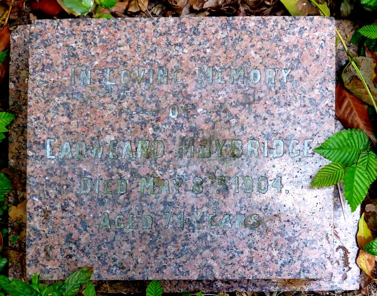 """The gravemarker for Eadward Muybridge, misspelled as """"Maybridge"""""""