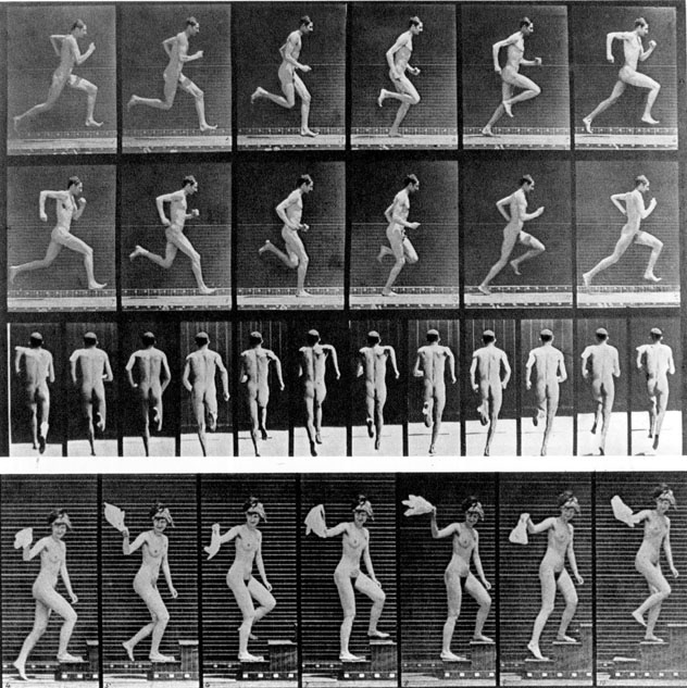 Series of motion studies by Eadweard Muybridge, c. 18