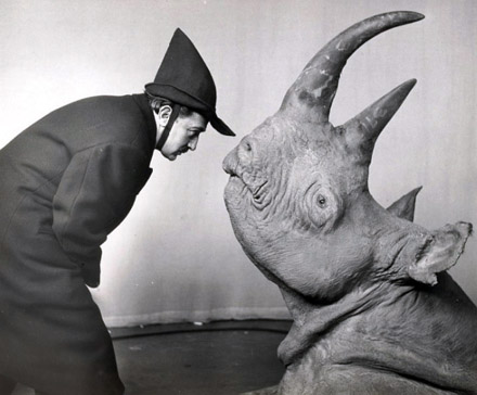 Dali-Rhino