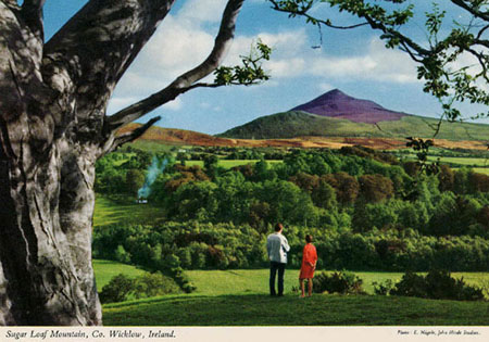1956 postcard featuring one of John Hinde's photos of rural Ireland.