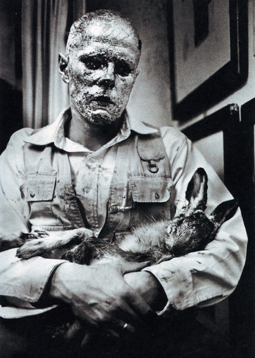 dead hare beuys