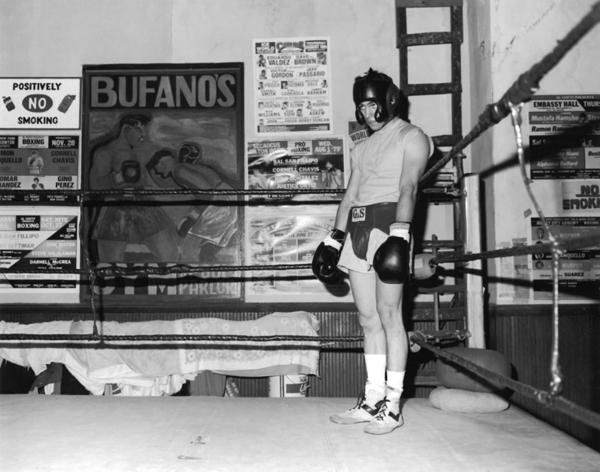 Boxers (12)
