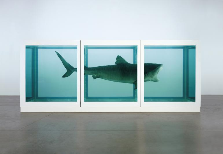"""The Physical Impossibility Of Death In The Mind Of Someone Living,"" by Damien Hirst,"