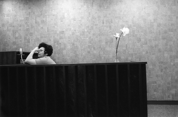 white-collar-by-ken-graves-and-eva-lipman-6