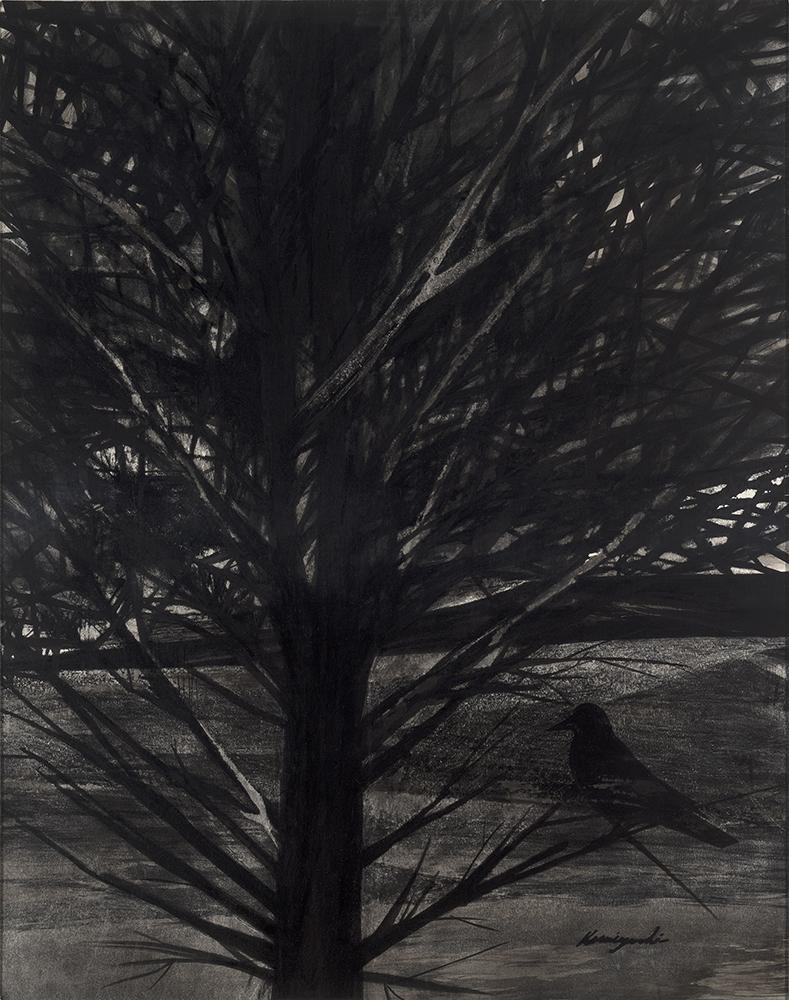 """""""Old Tree,"""" 1953"""